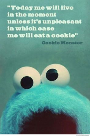 eating your feelings, cookie monster style