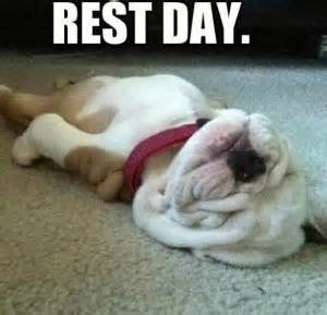 and don't forget your rest days!