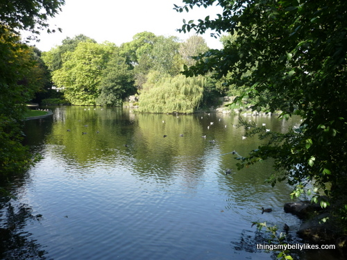 St Stephen's Green, showing why everyone goes on about Ireland's 40 shades of green