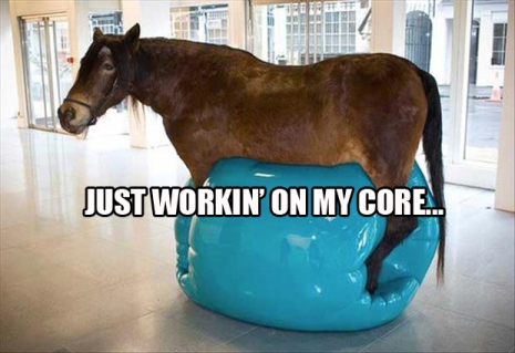 warning: do not let horses use your exercise ball. They are terrible at returning them